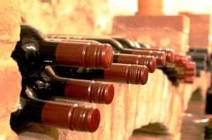 Gekühlt gelagerte Weine im Weinkeller