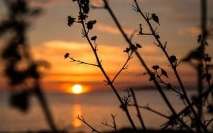 Urlaubsorte auf Mallorca: Sonne & Natur